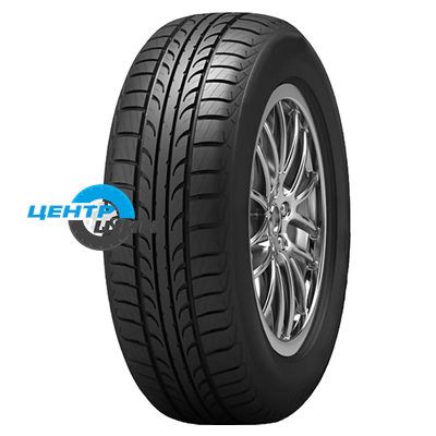 Tunga 175/70R13 86T  Zodiak 2 PS-7
